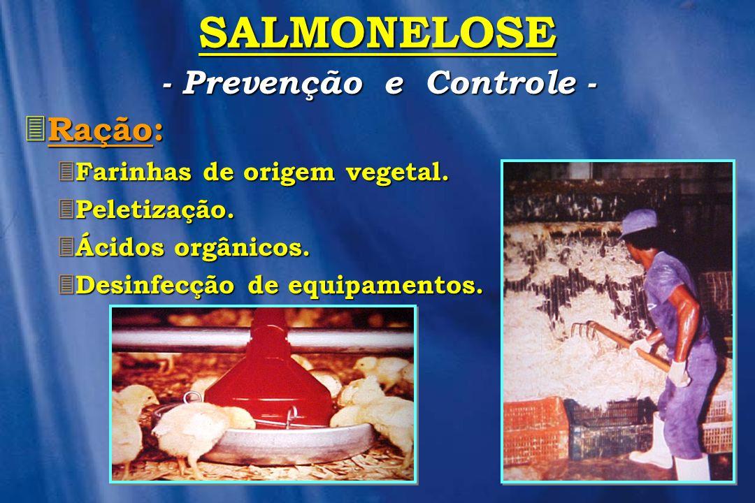- Prevenção e Controle -