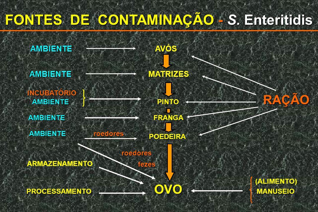 FONTES DE CONTAMINAÇÃO - S. Enteritidis