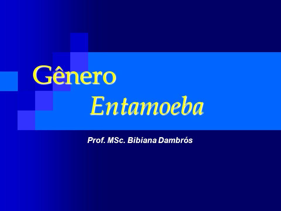 Gênero Entamoeba Prof. MSc. Bibiana Dambrós