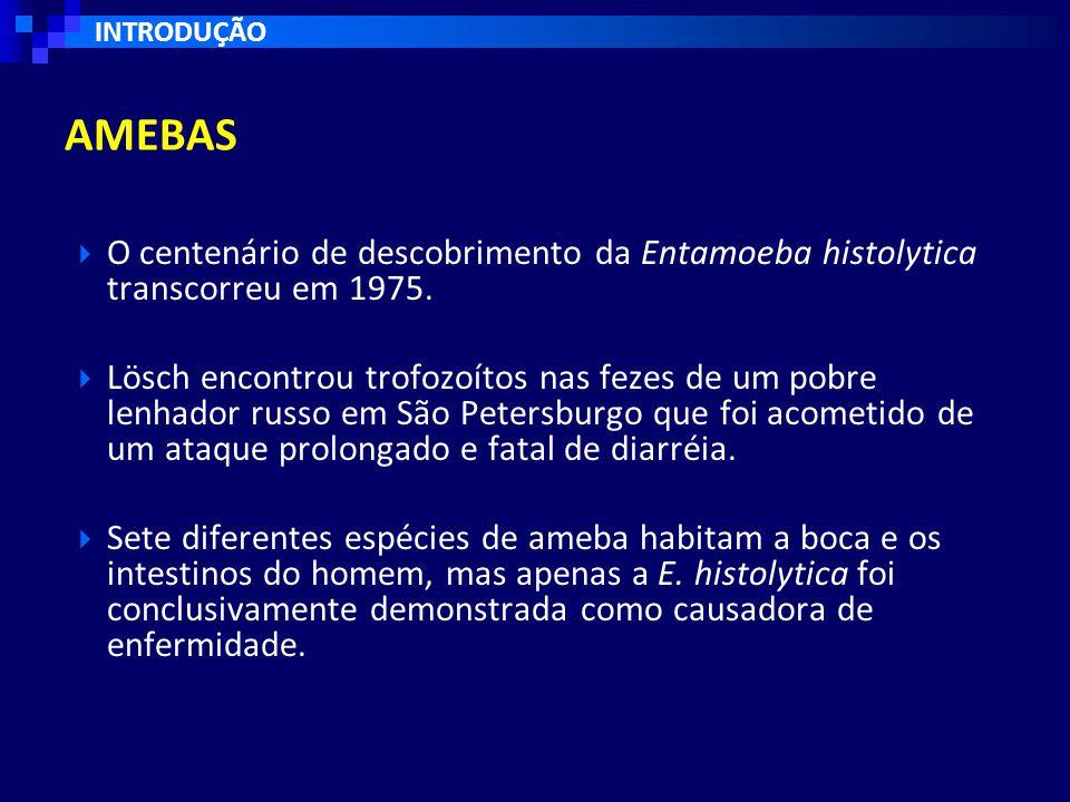 INTRODUÇÃO AMEBAS. O centenário de descobrimento da Entamoeba histolytica transcorreu em 1975.