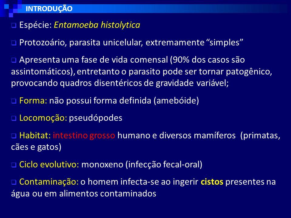Espécie: Entamoeba histolytica