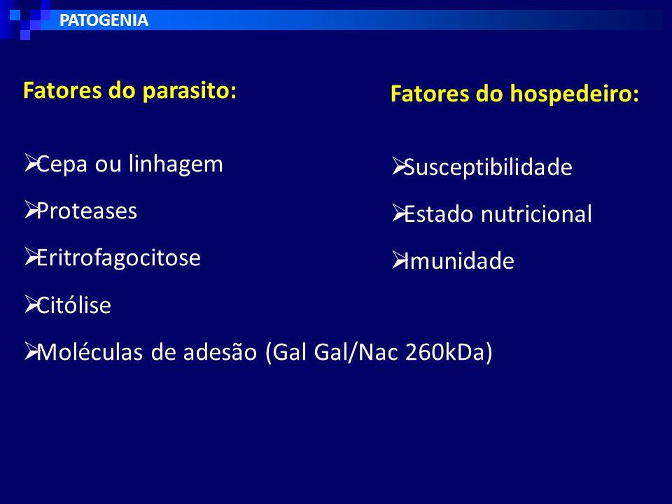 Fatores do hospedeiro: Susceptibilidade Estado nutricional Imunidade