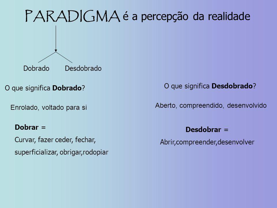 PARADIGMA é a percepção da realidade