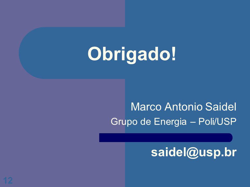 Marco Antonio Saidel Grupo de Energia – Poli/USP saidel@usp.br