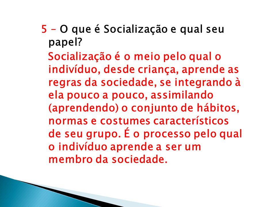5 – O que é Socialização e qual seu papel