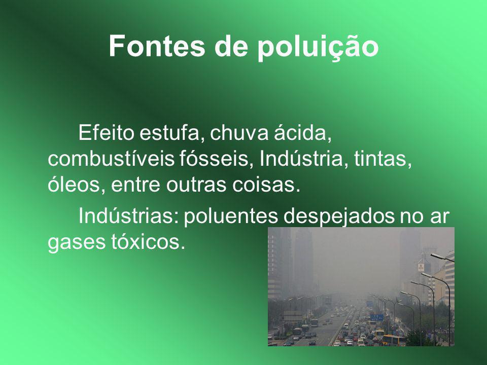 Fontes de poluição Efeito estufa, chuva ácida, combustíveis fósseis, Indústria, tintas, óleos, entre outras coisas.