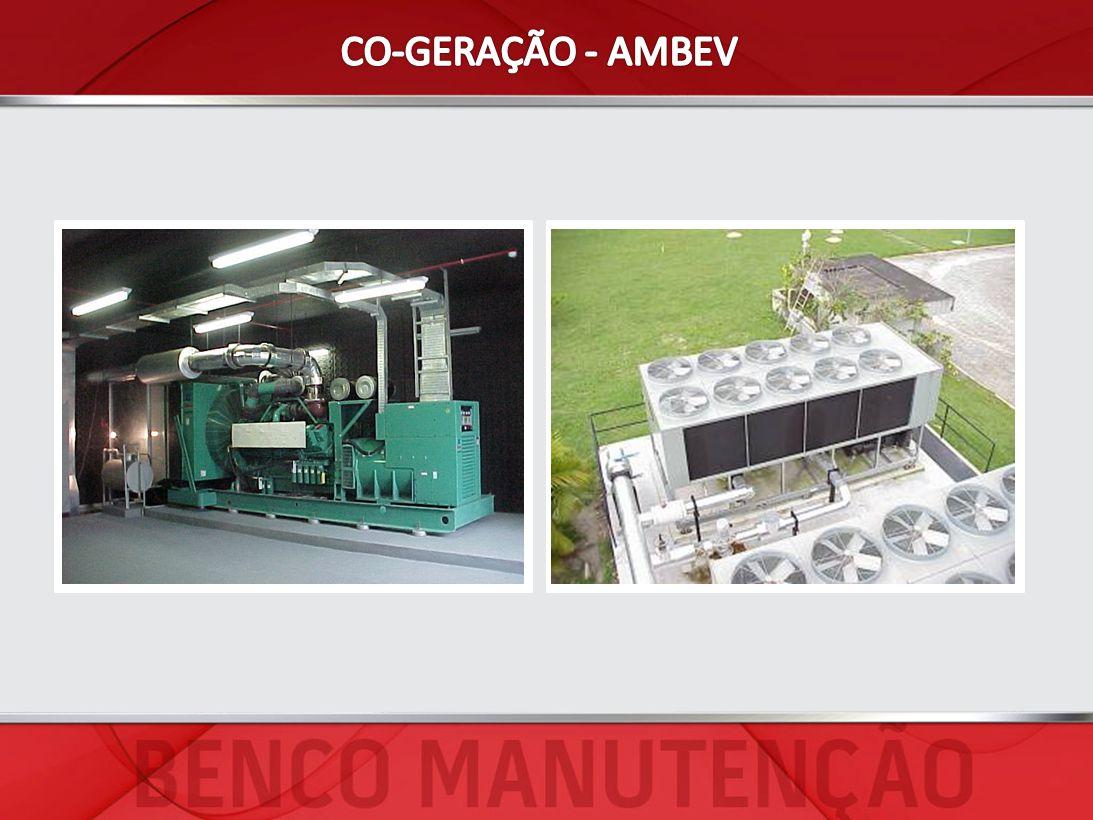 CO-GERAÇÃO - AMBEV