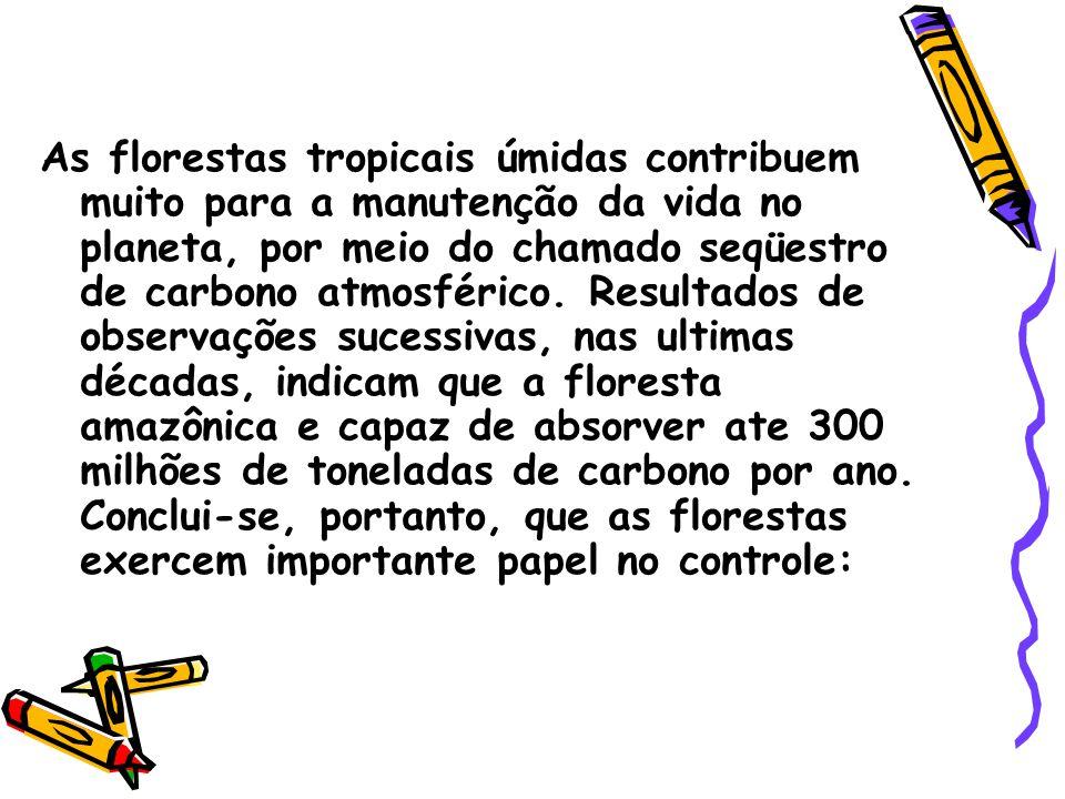 As florestas tropicais úmidas contribuem muito para a manutenção da vida no planeta, por meio do chamado seqüestro de carbono atmosférico.