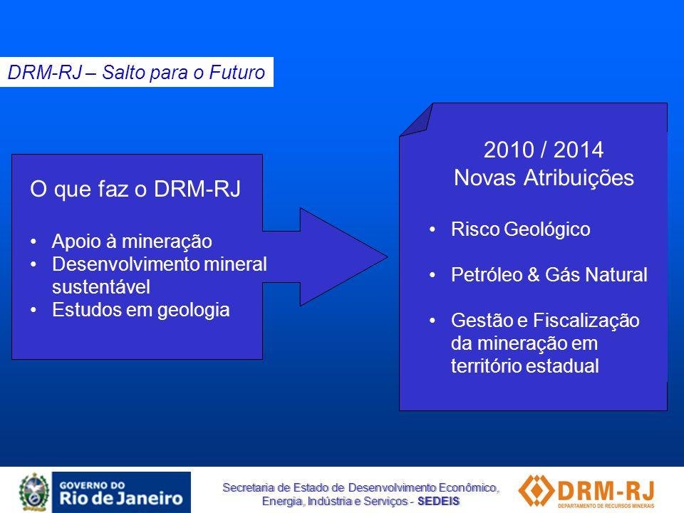 2010 / 2014 Novas Atribuições O que faz o DRM-RJ