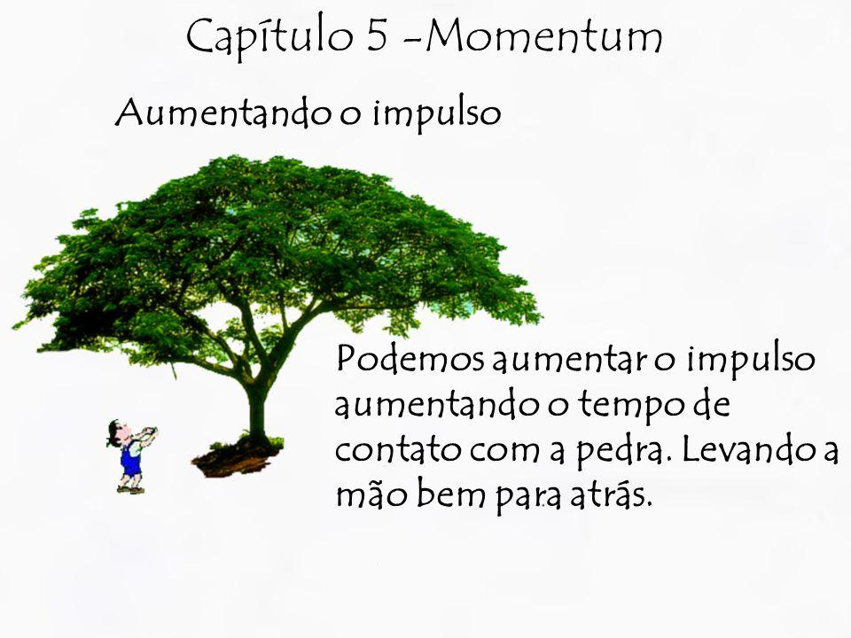 Capítulo 5 -Momentum Aumentando o impulso