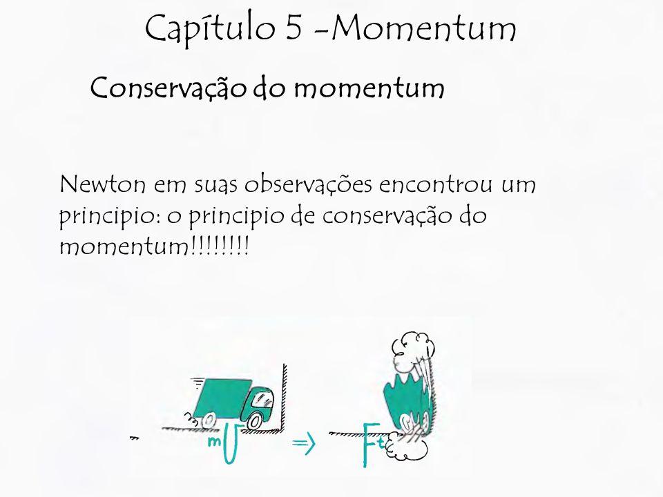 Capítulo 5 -Momentum Conservação do momentum