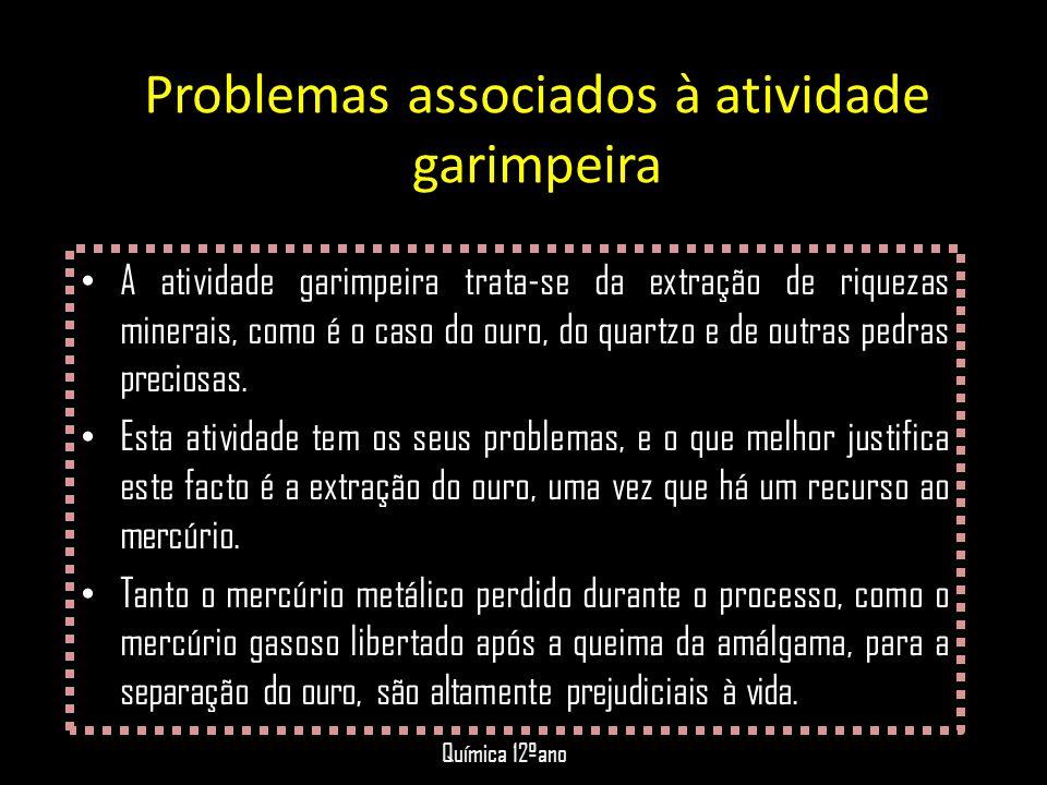 Problemas associados à atividade garimpeira