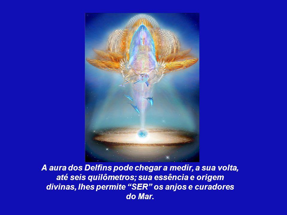 A aura dos Delfins pode chegar a medir, a sua volta, até seis quilômetros; sua essência e origem divinas, lhes permite SER os anjos e curadores do Mar.