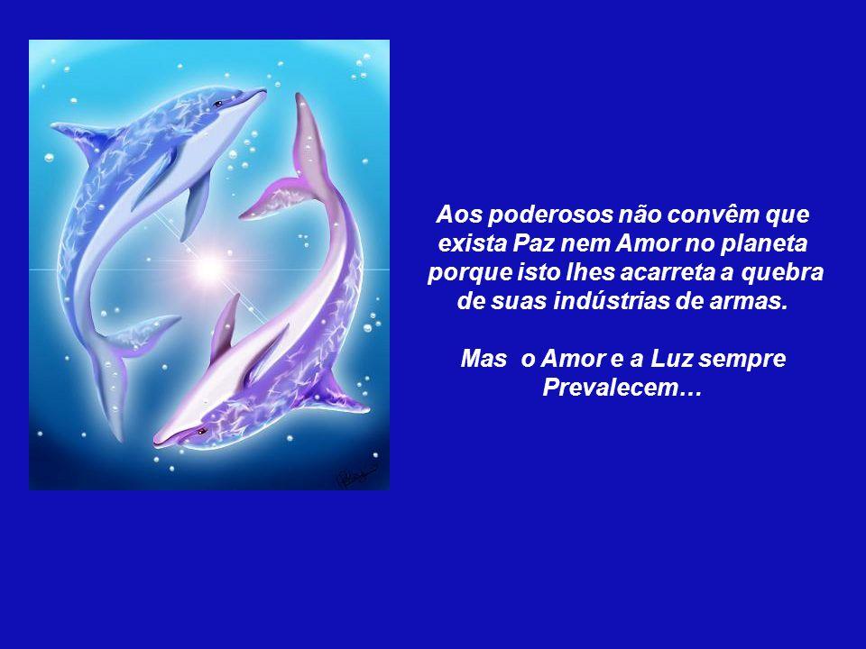 Aos poderosos não convêm que exista Paz nem Amor no planeta