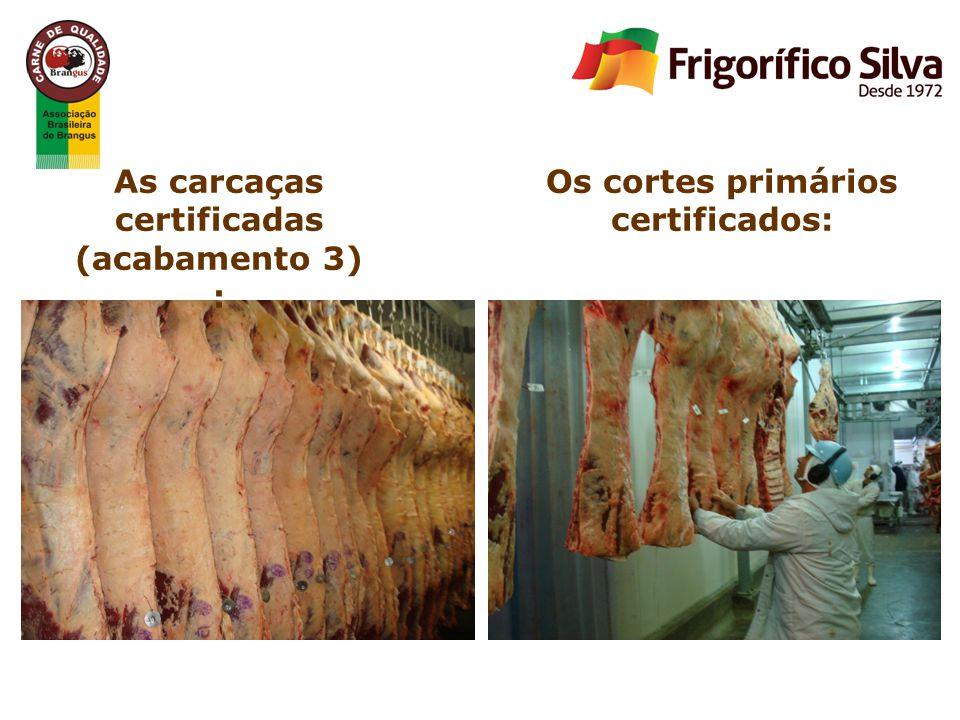 As carcaças certificadas (acabamento 3)