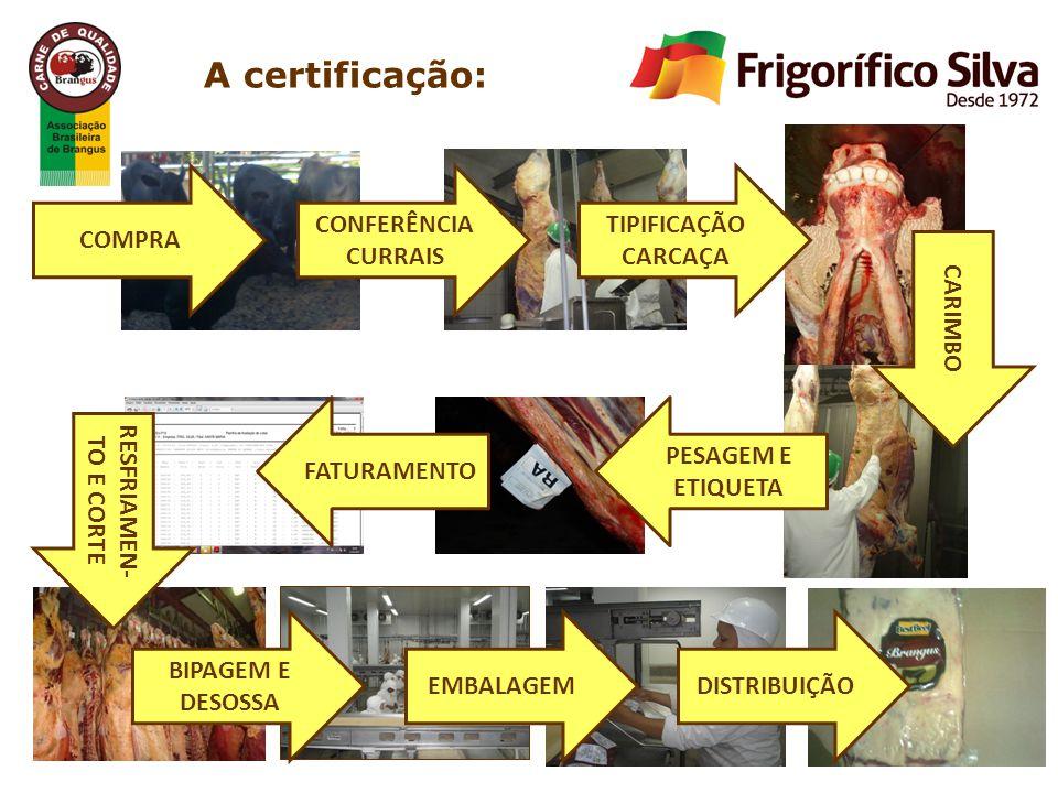 A certificação: COMPRA CONFERÊNCIA CURRAIS TIPIFICAÇÃO CARCAÇA CARIMBO