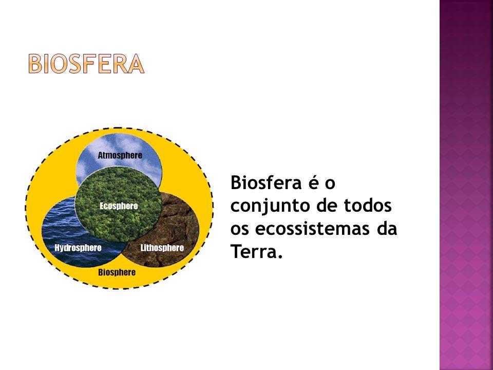 Biosfera Biosfera é o conjunto de todos os ecossistemas da Terra.