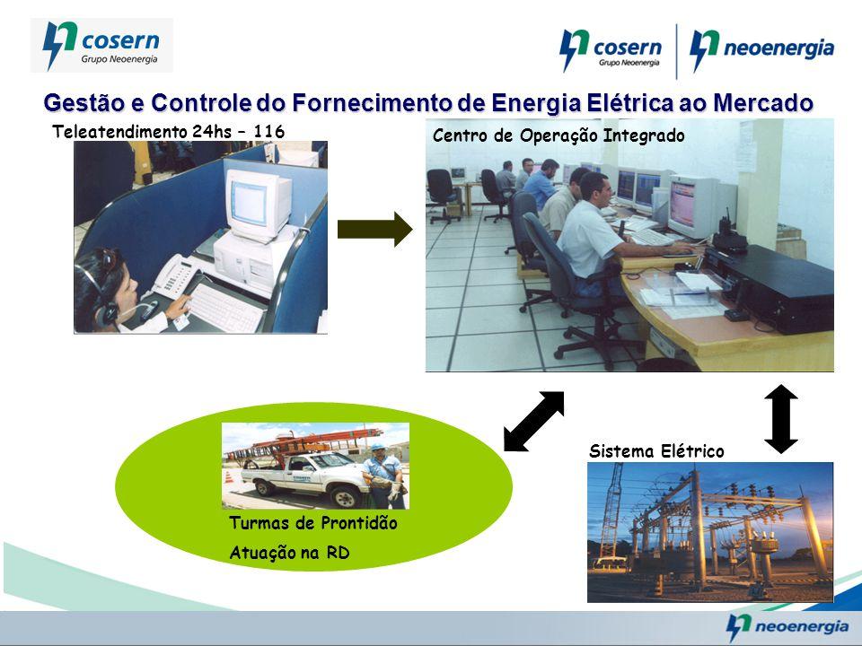 Gestão e Controle do Fornecimento de Energia Elétrica ao Mercado