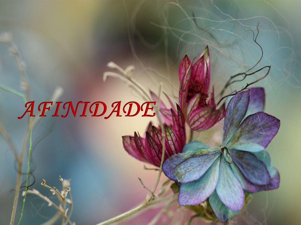 AFINIDADE
