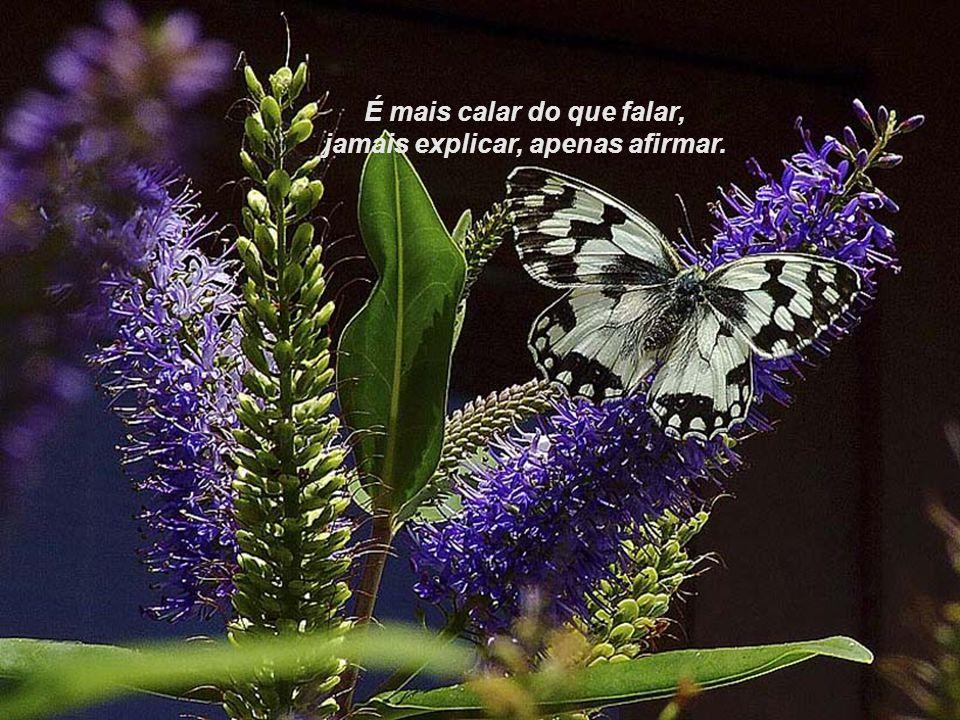É mais calar do que falar, jamais explicar, apenas afirmar.