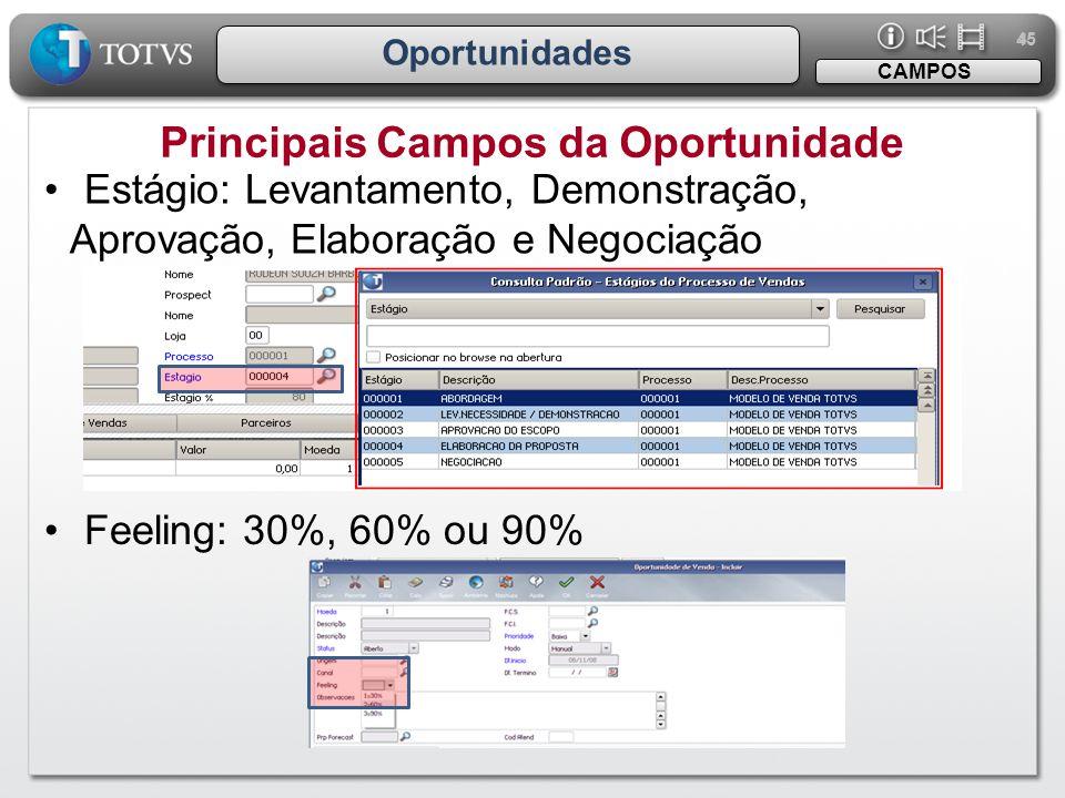 Principais Campos da Oportunidade