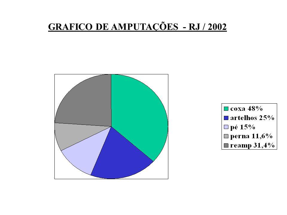 GRAFICO DE AMPUTAÇÕES - RJ / 2002