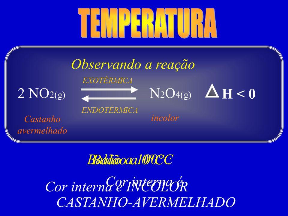 CASTANHO-AVERMELHADO