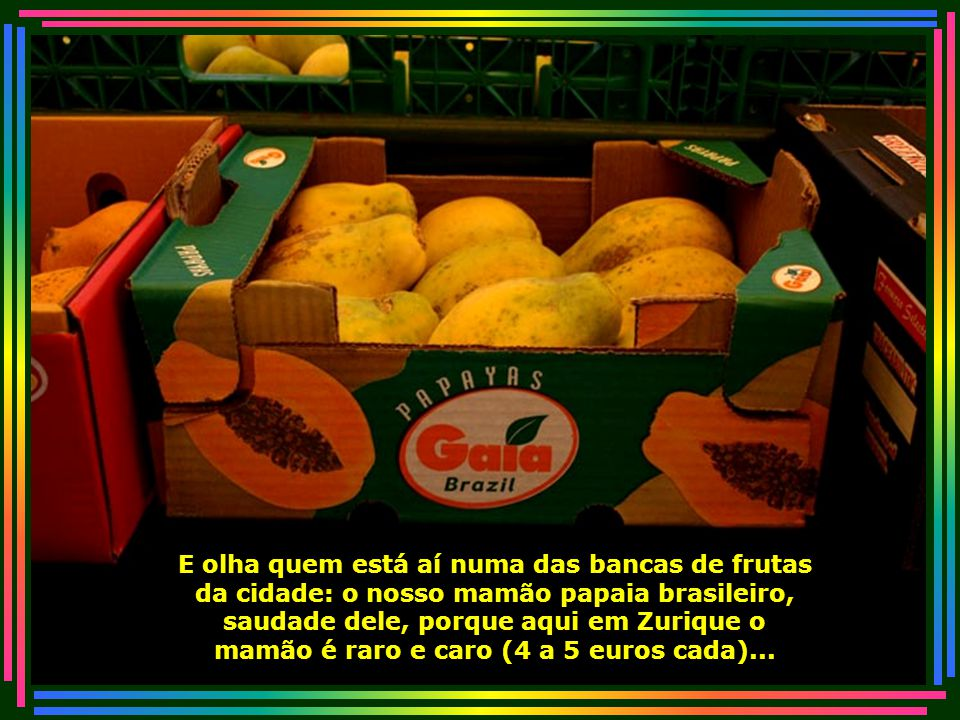 IMG_3203 - SUIÇA - ZURICH - MAMÃO PAPAIA DO BRASIL-700