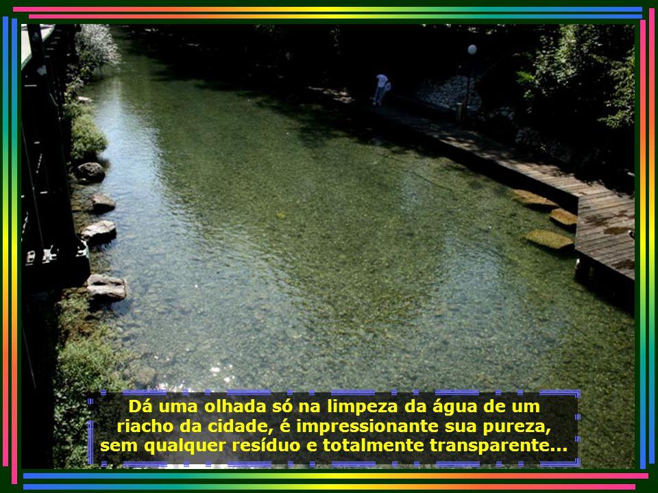 IMG_3152 - SUIÇA - ZURICH - CÓRREGO DE ÁGUA LIMPA-700