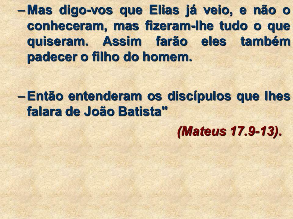 Mas digo-vos que Elias já veio, e não o conheceram, mas fizeram-lhe tudo o que quiseram. Assim farão eles também padecer o filho do homem.