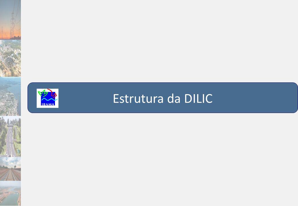 Estrutura da DILIC 13 13
