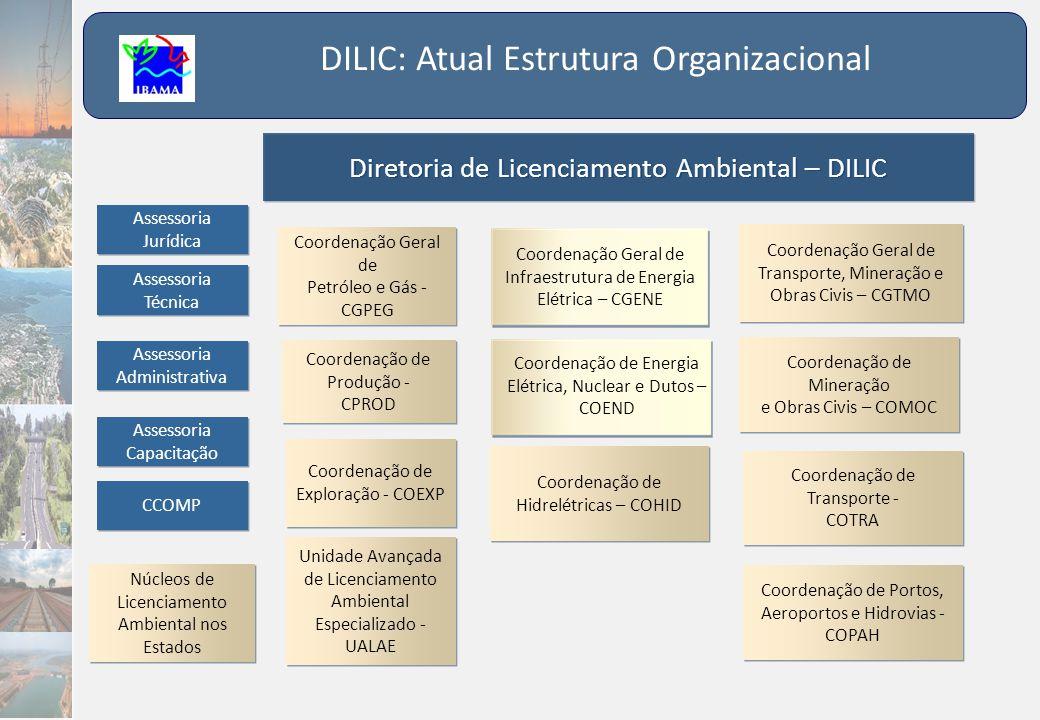 DILIC: Atual Estrutura Organizacional