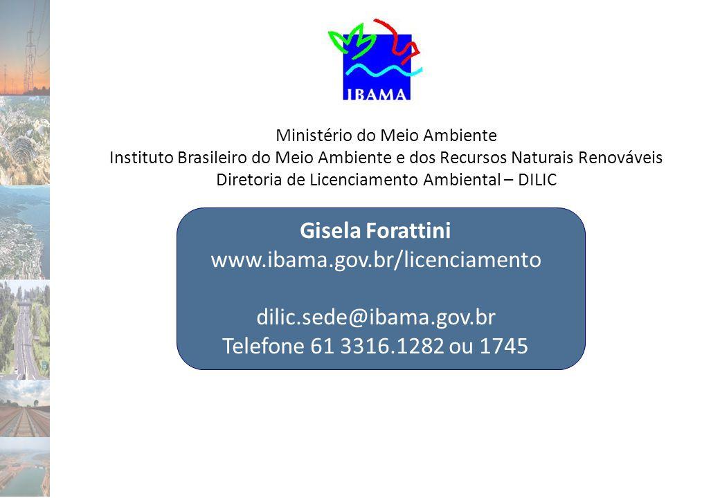 Gisela Forattini www.ibama.gov.br/licenciamento