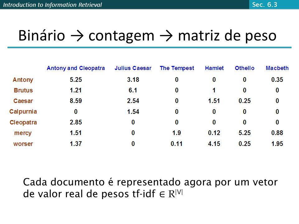 Binário → contagem → matriz de peso