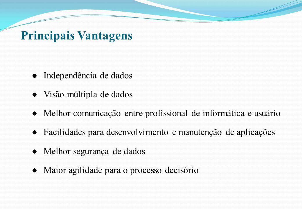 Principais Vantagens Independência de dados Visão múltipla de dados