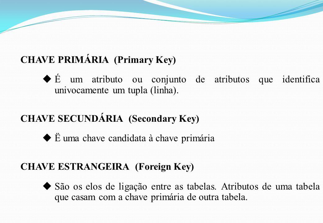CHAVE PRIMÁRIA (Primary Key)