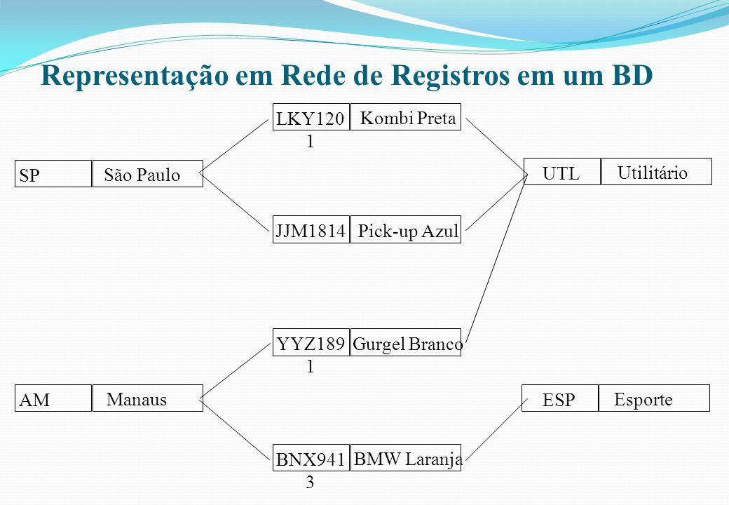 Representação em Rede de Registros em um BD