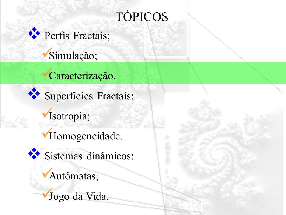 TÓPICOS Perfis Fractais; Simulação; Caracterização.