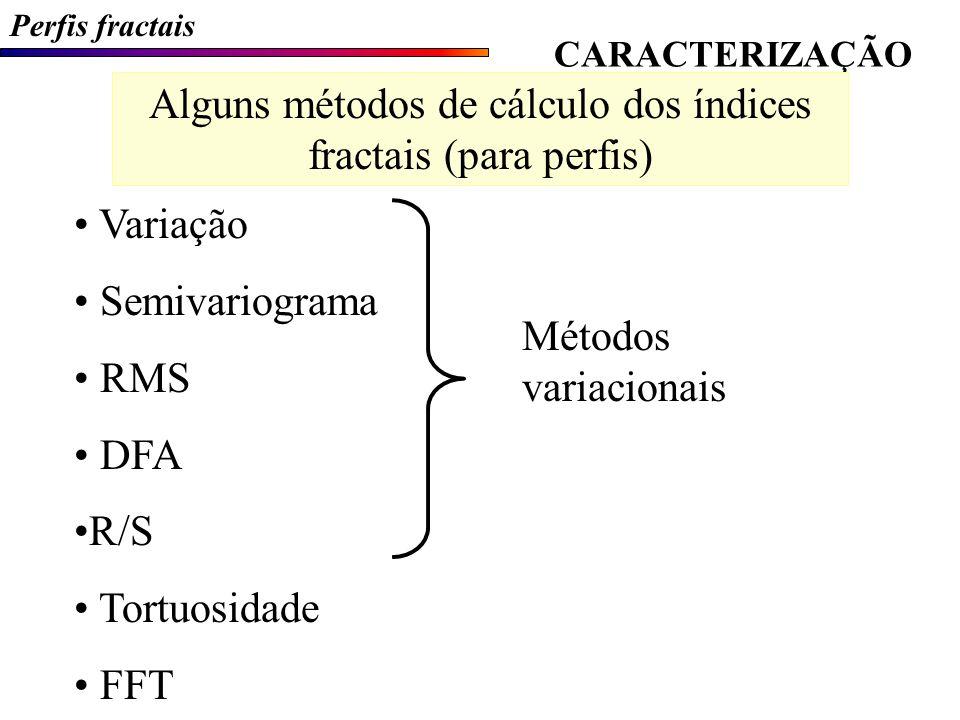 Alguns métodos de cálculo dos índices fractais (para perfis)