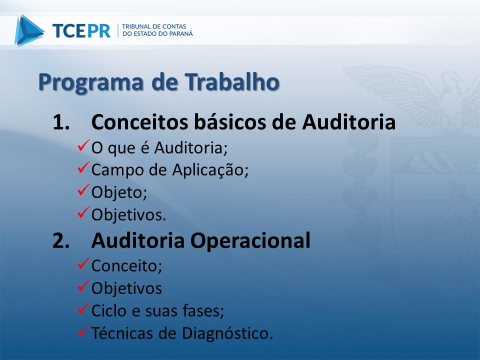 Programa de Trabalho Conceitos básicos de Auditoria
