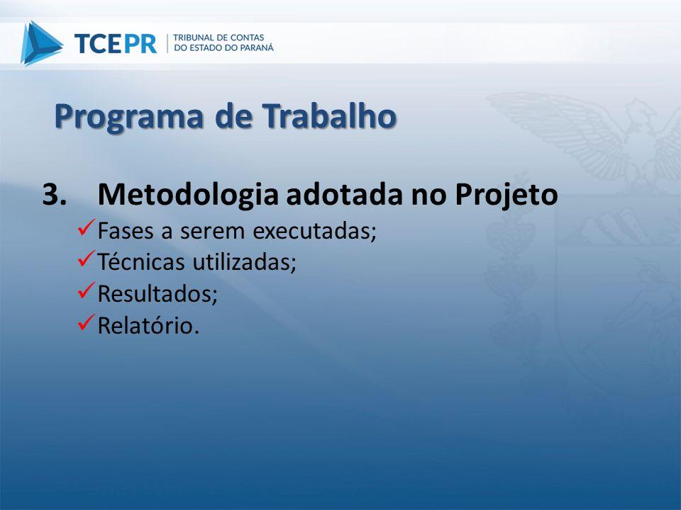 Programa de Trabalho Metodologia adotada no Projeto