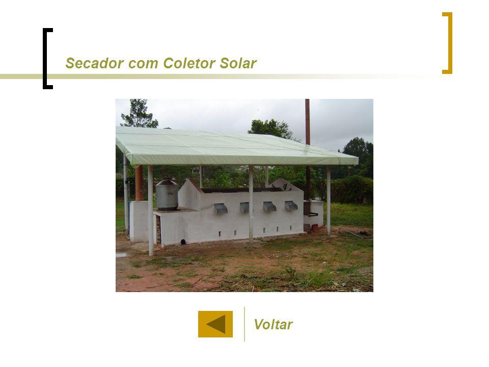 Secador com Coletor Solar