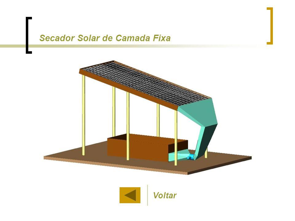 Secador Solar de Camada Fixa