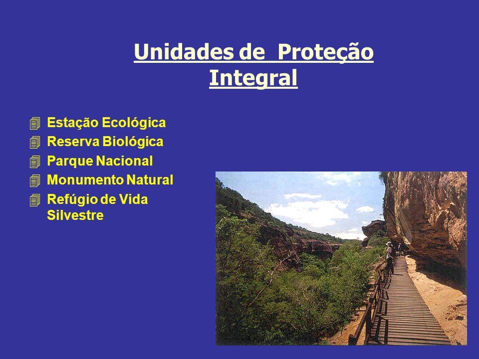 Unidades de Proteção Integral