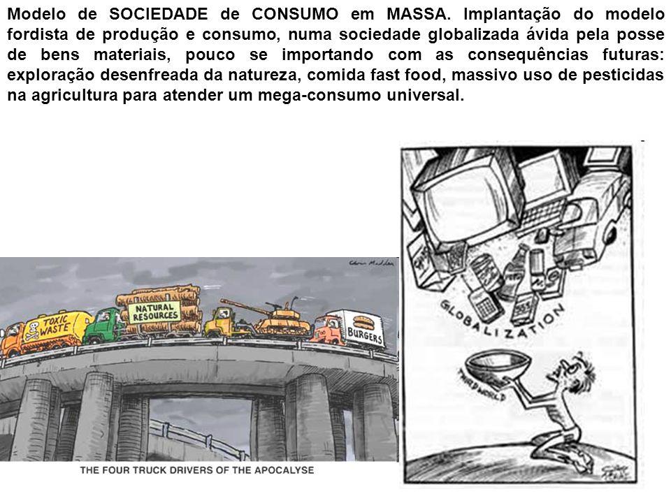 Modelo de SOCIEDADE de CONSUMO em MASSA