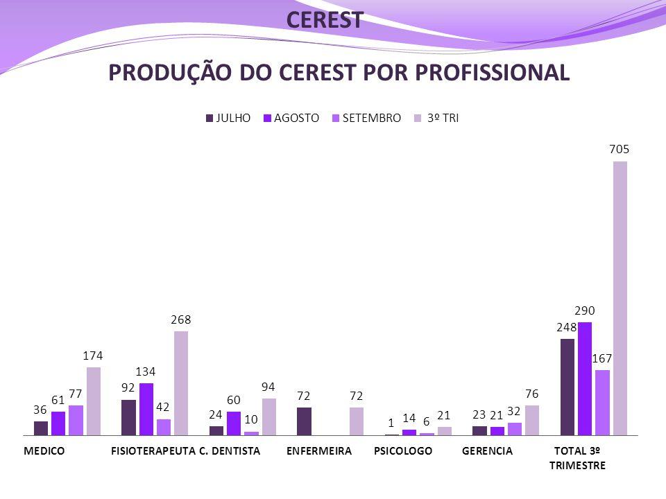 PRODUÇÃO DO CEREST POR PROFISSIONAL