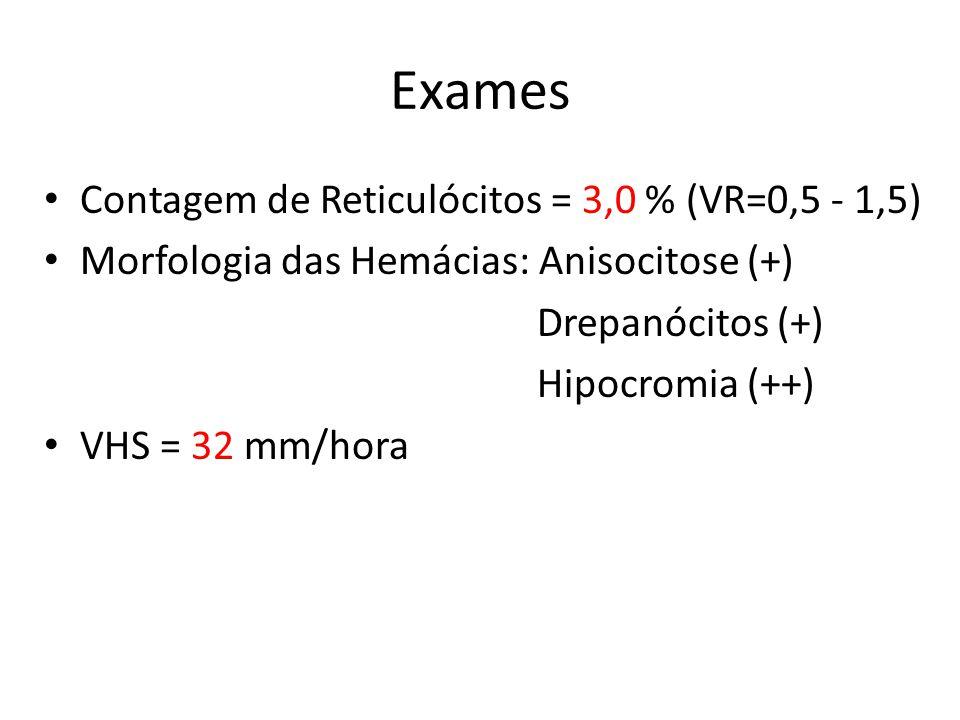 Exames Contagem de Reticulócitos = 3,0 % (VR=0,5 - 1,5)