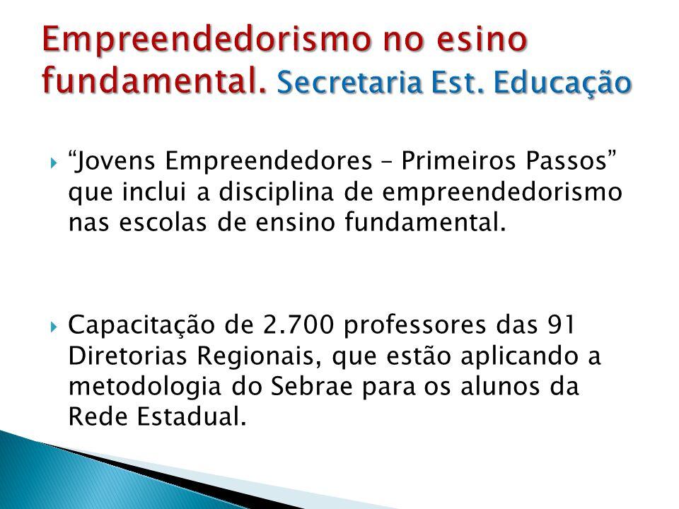 Empreendedorismo no esino fundamental. Secretaria Est. Educação