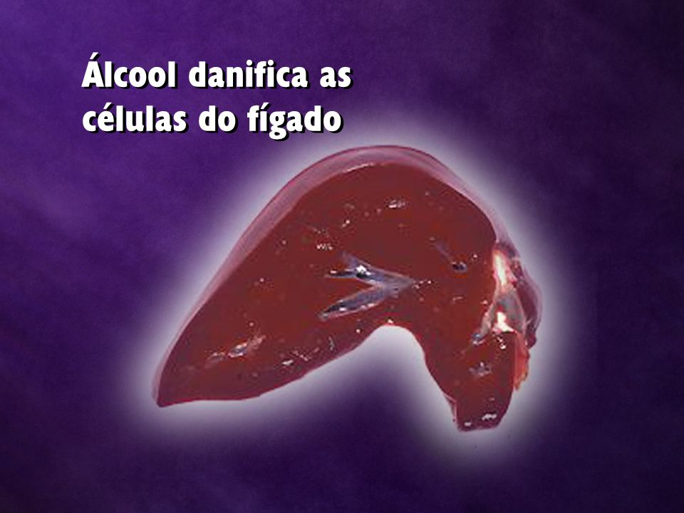 Álcool danifica as células do fígado