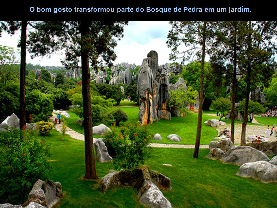 O bom gosto transformou parte do Bosque de Pedra em um jardím.